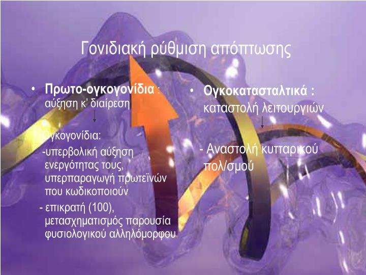 Πρωτο-ογκογονίδια