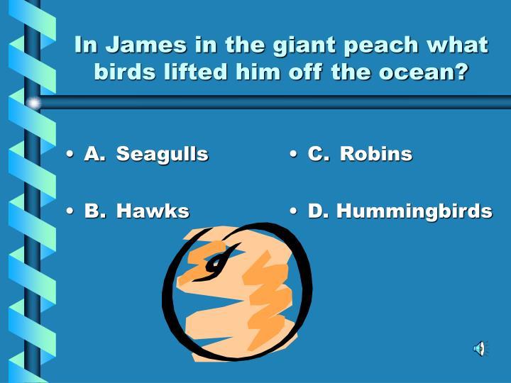 A.Seagulls