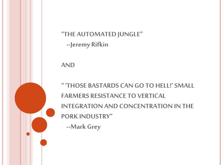 """THE AUTOMATED JUNGLE"""