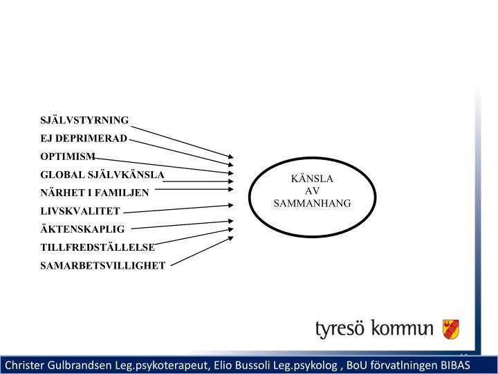 Faktorer som samtliga förklarar varians i KASAM