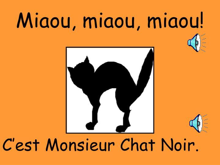 Miaou, miaou, miaou!