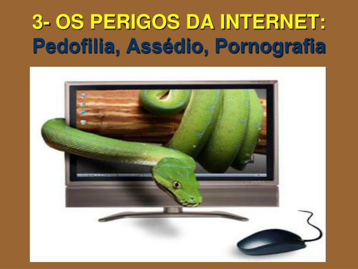 3- OS PERIGOS DA INTERNET: