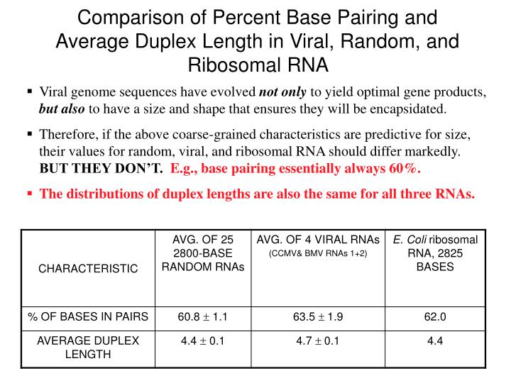 Comparison of Percent Base Pairing and Average Duplex Length in Viral, Random, and Ribosomal RNA