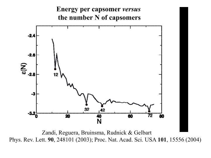 Energy per capsomer