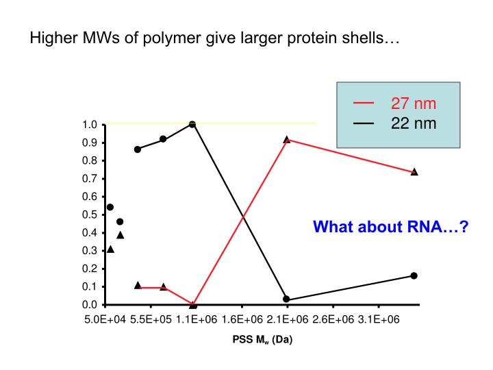 Higher MWs of polymer give larger protein shells…
