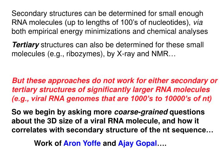Secondary structures can be determined for small enough RNA molecules (up to lengths of 100's of nucleotides),