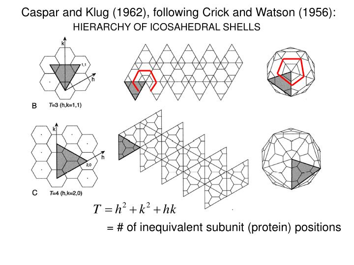 Caspar and Klug (1962), following Crick and Watson (1956):