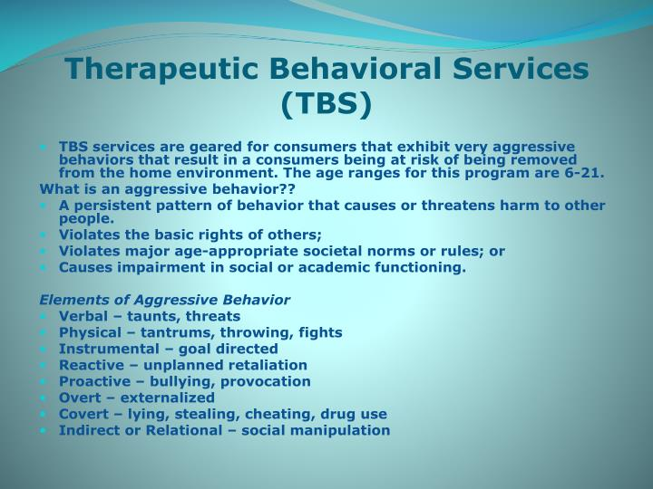 Therapeutic Behavioral Services (TBS)