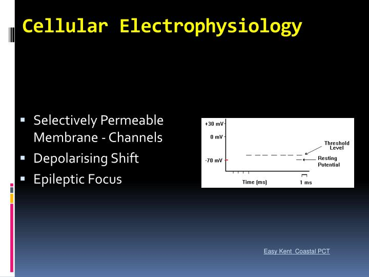 Cellular Electrophysiology