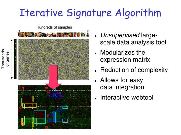 Iterative Signature Algorithm