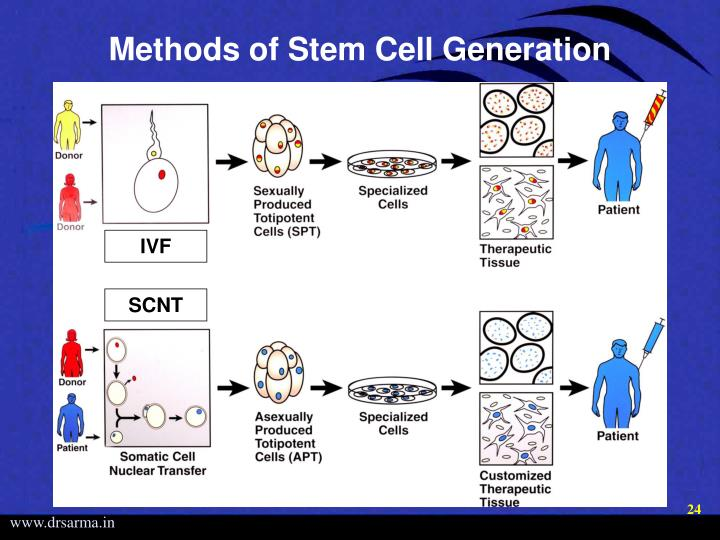 Methods of Stem Cell Generation