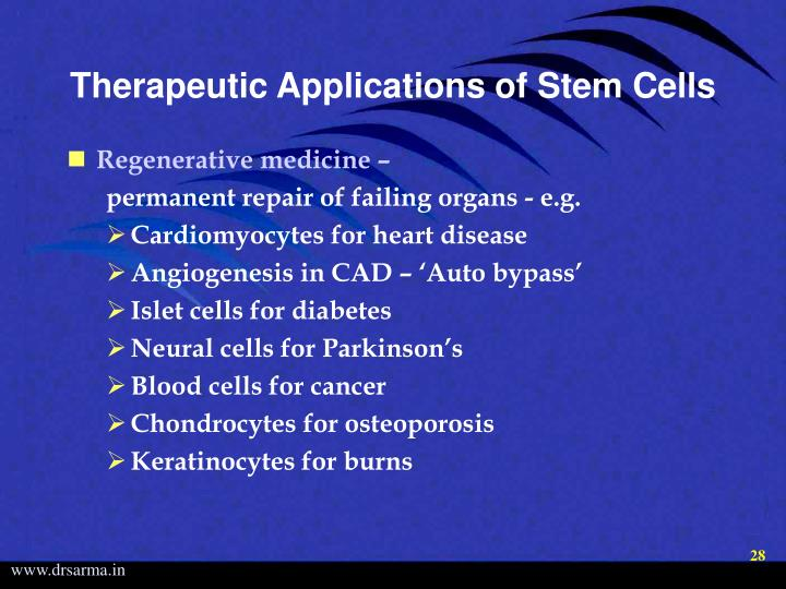 Therapeutic Applications of Stem Cells