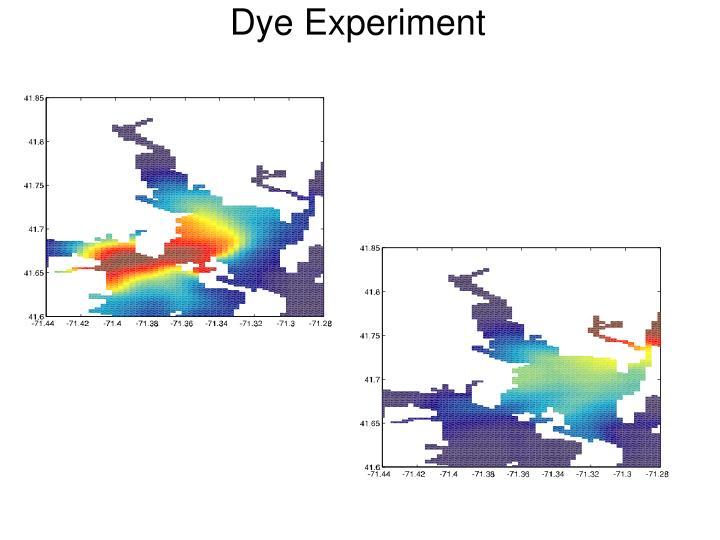 Dye Experiment