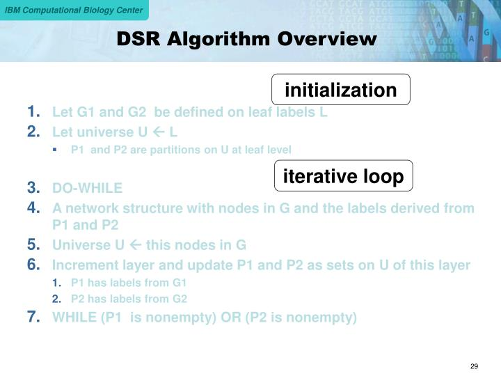 DSR Algorithm Overview