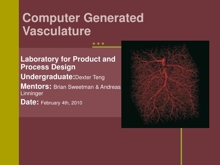 Computer generated vasculature