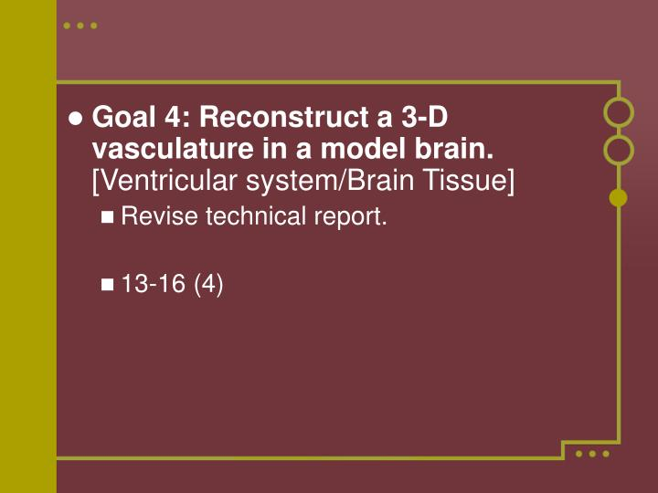 Goal 4: Reconstruct a 3-D vasculature in a model brain.