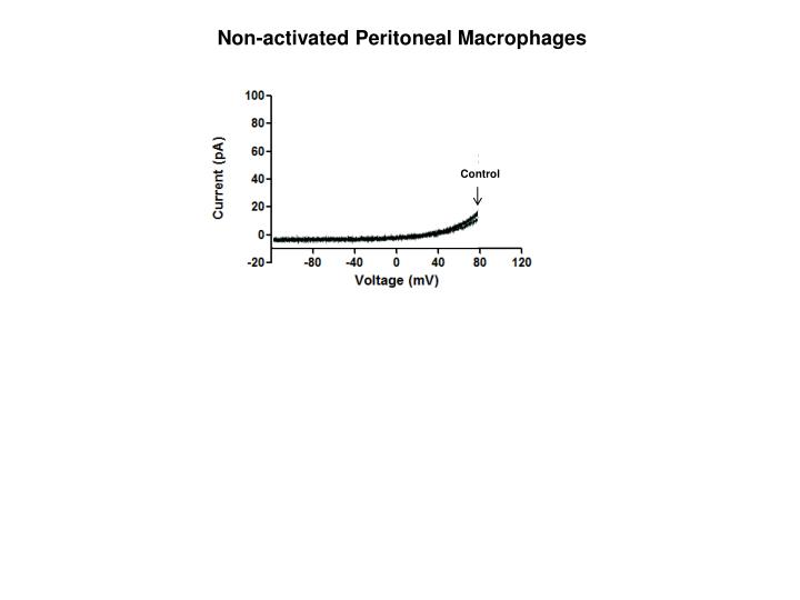 Non-activated Peritoneal Macrophages