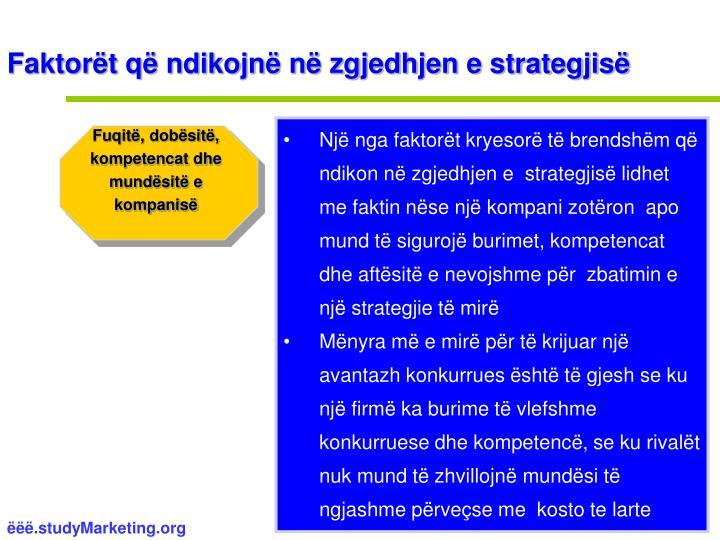Faktorët që ndikojnë në zgjedhjen e strategjisë