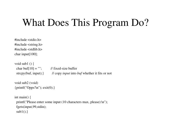 What Does This Program Do?