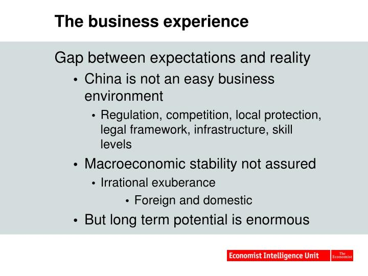 The business experience