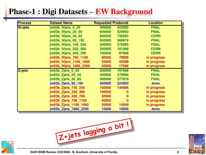 Phase-1 : Digi Datasets –