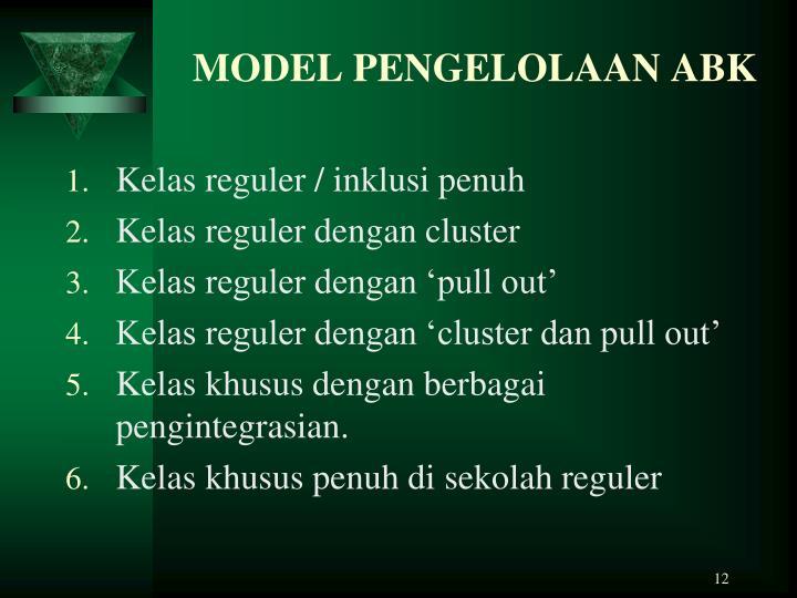 MODEL PENGELOLAAN ABK