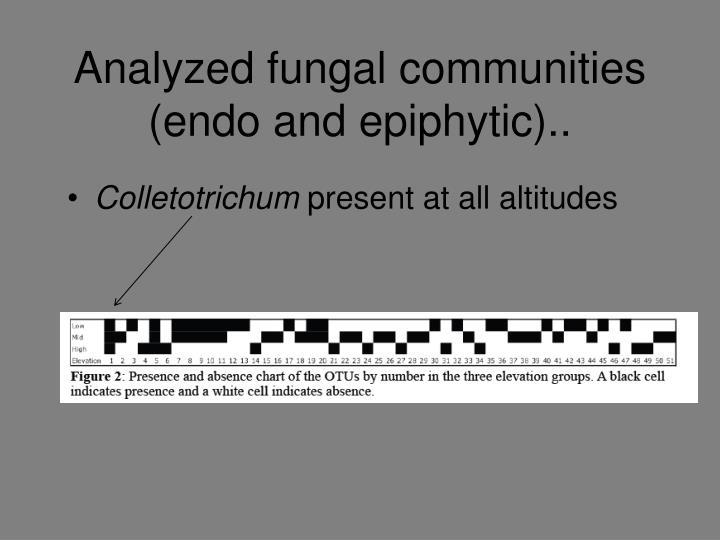 Analyzed fungal communities (endo and epiphytic)..