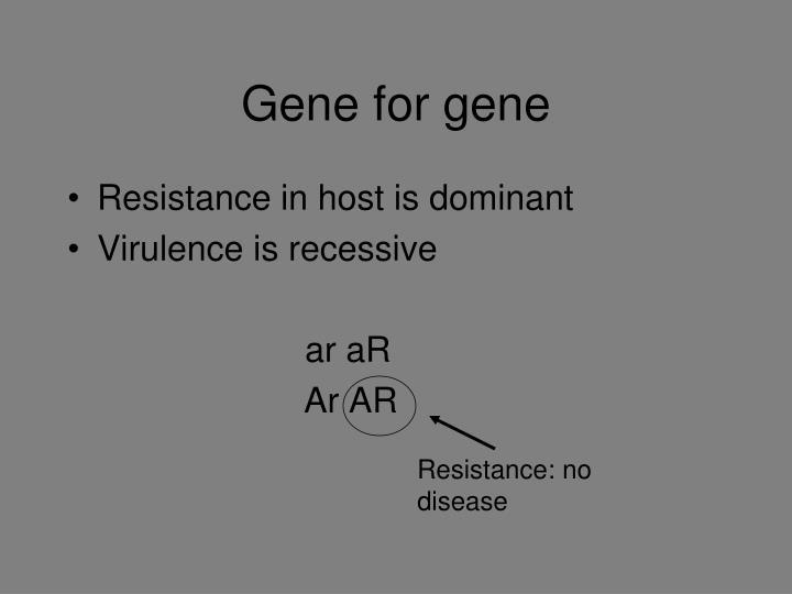 Gene for gene
