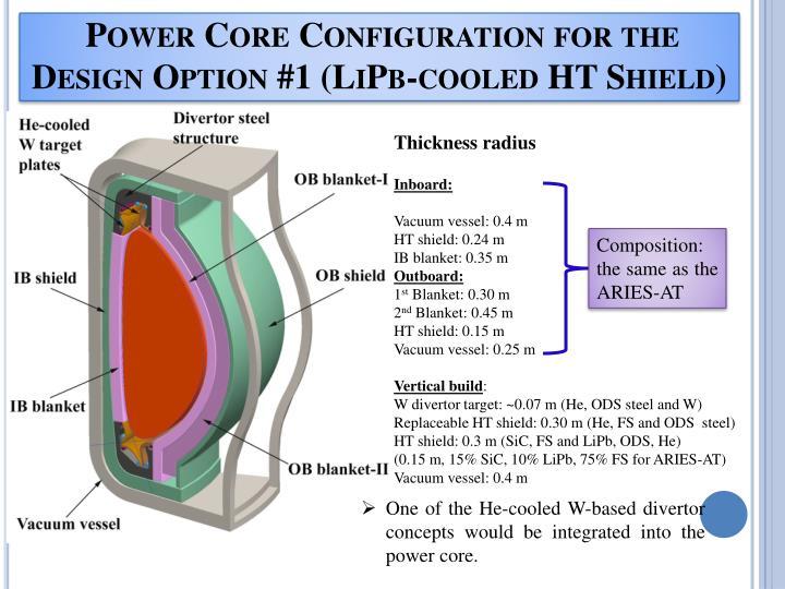 Power Core Configuration for the Design Option #1 (LiPb