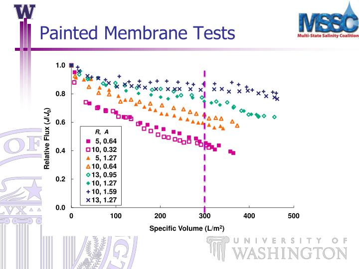 Painted Membrane Tests