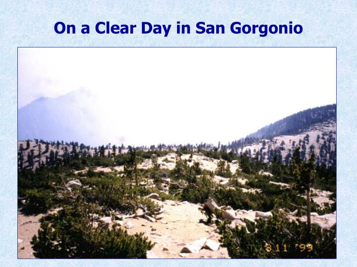 On a Clear Day in San Gorgonio
