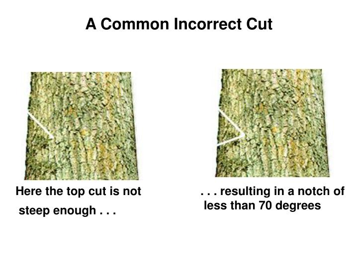 A Common Incorrect Cut