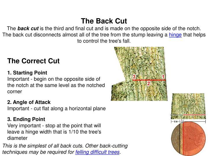 The Back Cut