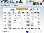 website chinese