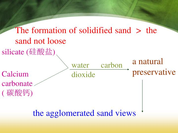 The formation of solidified sand  >  the sand not loose