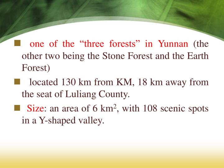 "one of the ""three forests"" in Yunnan"