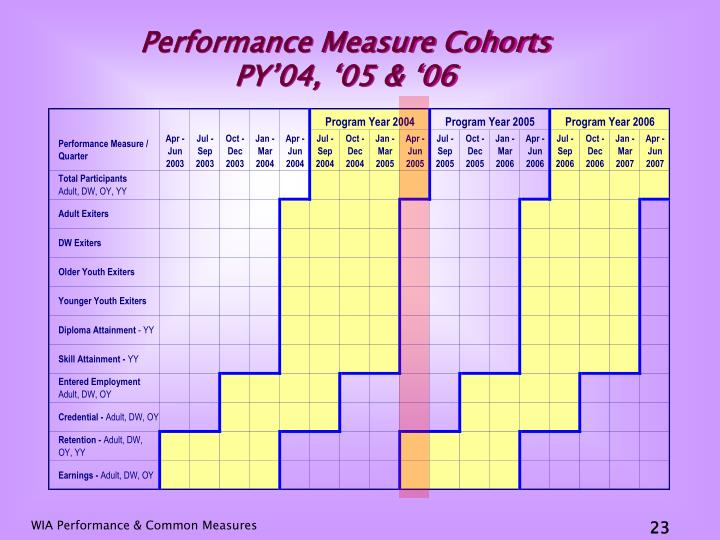 Performance Measure Cohorts