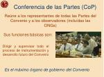 conferencia de las partes cop