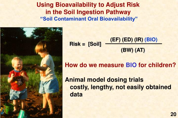 Using Bioavailability to Adjust Risk