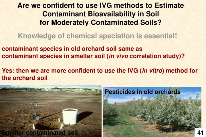 Are we confident to use IVG methods to Estimate Contaminant Bioavailability in Soil