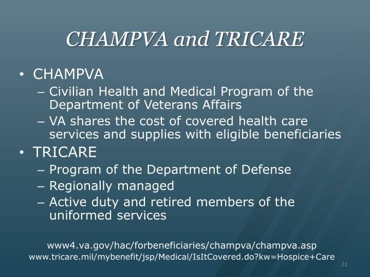 understanding the department of veteran affairs Understanding your employment rights under the americans with disabilities act us department of veterans affairs.