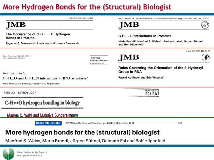 More Hydrogen Bonds