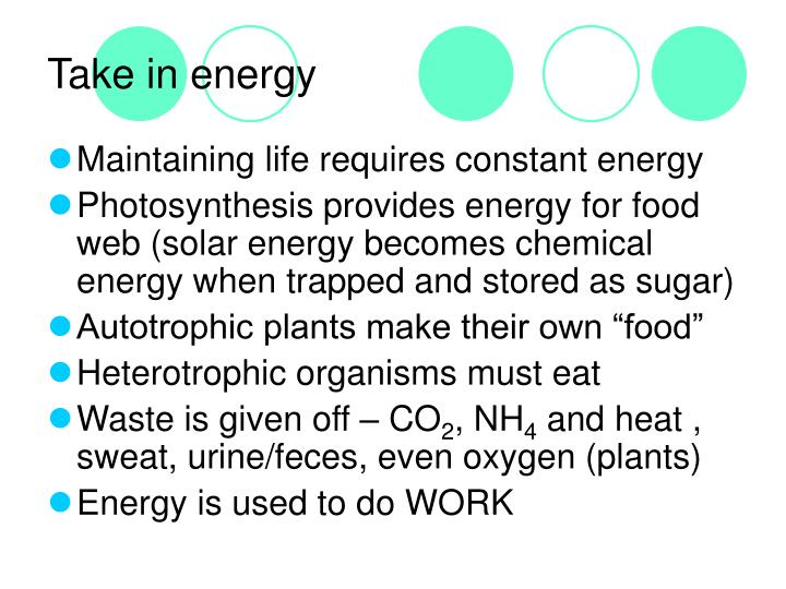 Take in energy
