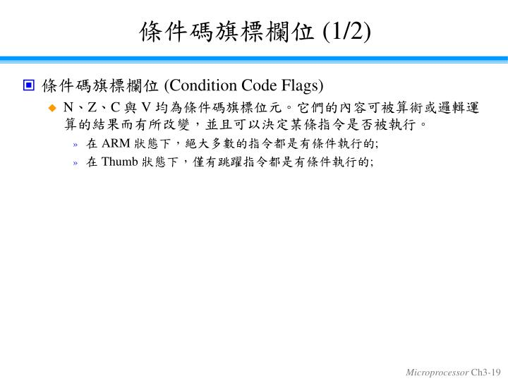 條件碼旗標欄位