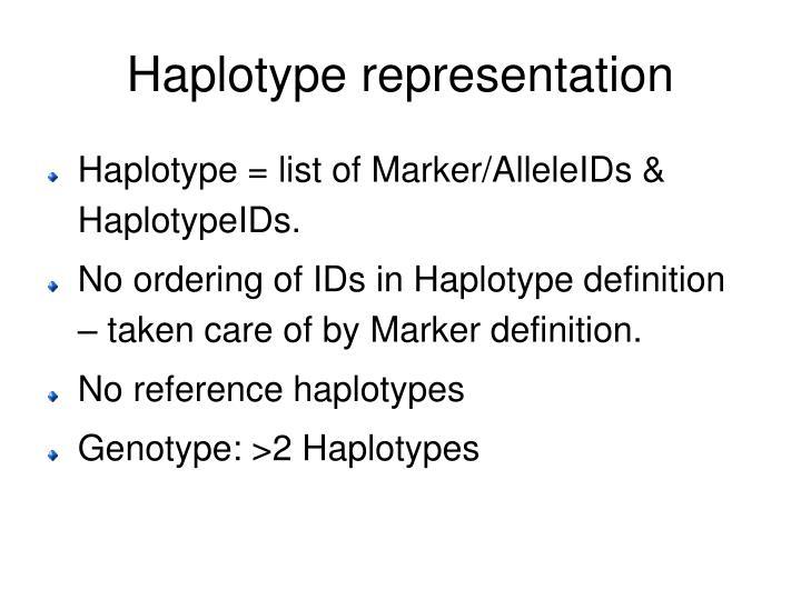 Haplotype representation