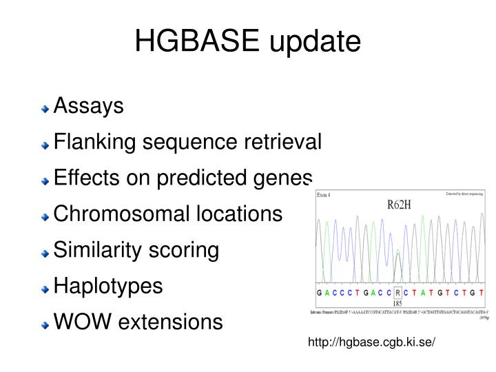 HGBASE update