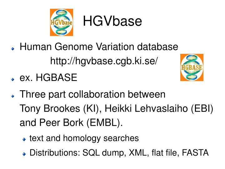 HGVbase