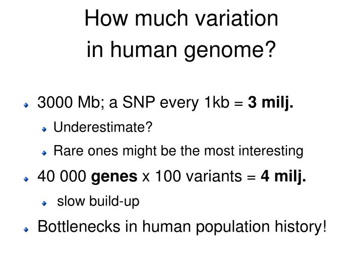 How much variation in human genome