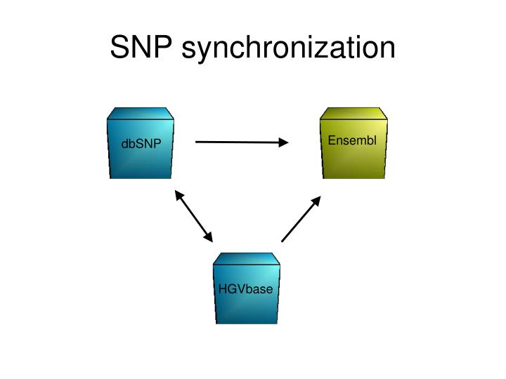 SNP synchronization