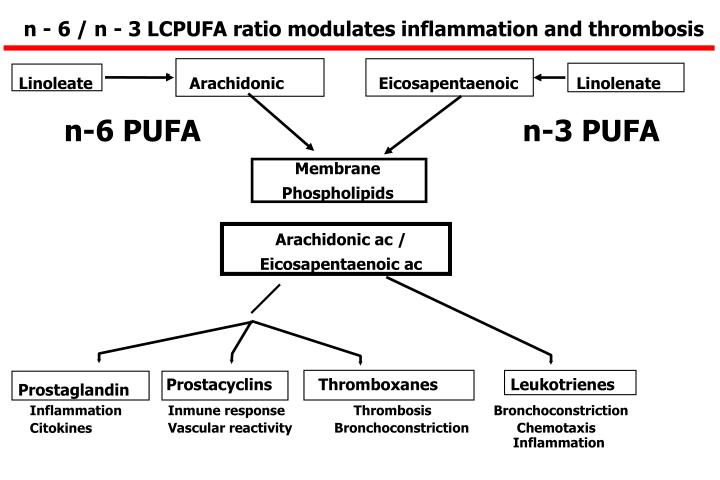 n - 6 / n - 3 LCPUFA ratio modulates inflammation and thrombosis